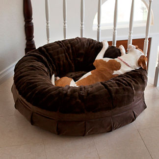 Animals Matter Daisy Puff™ Pet Bed