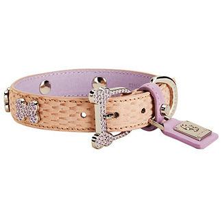 Mojave Tan Limited Dog Collar