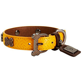 Mocha Yellow and Brown Limited Collar