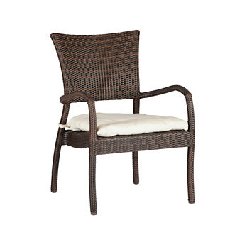 Skye Euro Lounge Chair with Cushions by Summer Classics