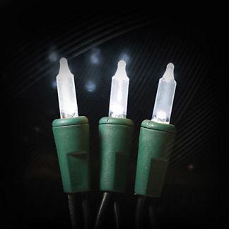 T5 50L Light Set