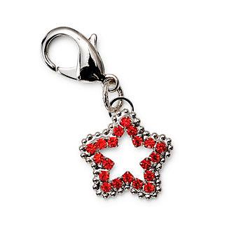 Crystal Star Charm