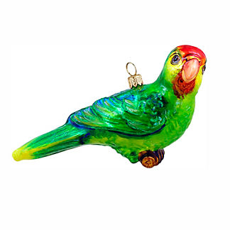 Green Amazon Parrot Ornament