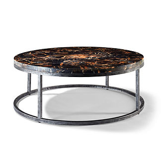 Petrified Wood Coffee Table with Black Iron Frame by Porta Forma