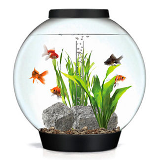MegaOrb 16-gallon Aquarium