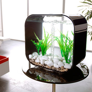 BiOrb Life 8-gallon Aquarium