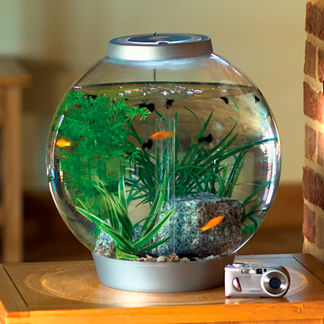Mini BiOrb 4-gallon Aquarium