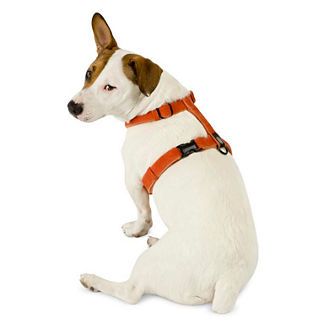 Cozy Hemp Dog Harness