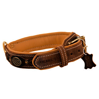 Dean's Legend Dog Collar