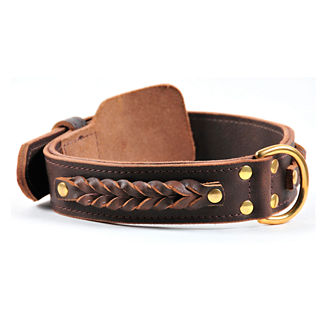 Braided Heaven Dog Collar