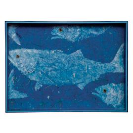 Blue Fish Tray
