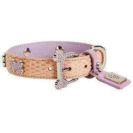 Mojave Tan Limited Dog Collar