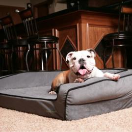 BuddyRest Crown Supreme Orthopedic Pet Bed