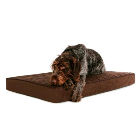 buddyrest blissful orthopedic pet bed