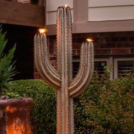 Cereus Torch