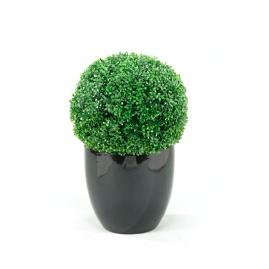 Boxwood Ball in Resin Planter