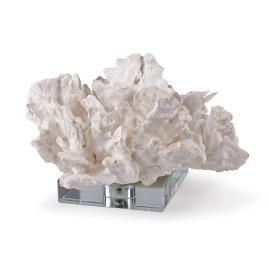 Cabbage Coral on Crystal Display