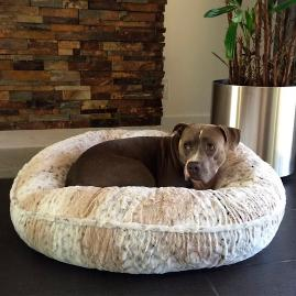 L.A. Dog Company® Pearl Leopard Chenille Donut Pet