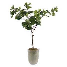 Fiddle Leaf Faux Fig Plant