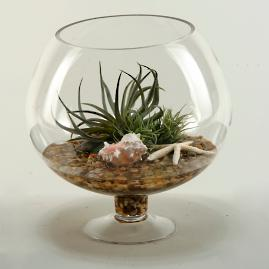 Easter Grass and Shells in Glass Vase