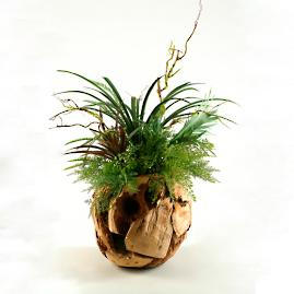Fern and Foliage in Natural Wood Vase