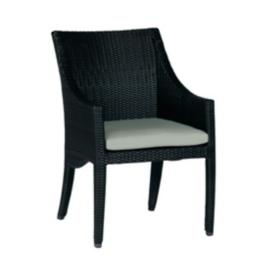 Athena Dining Arm Chair with Cushion by Summer