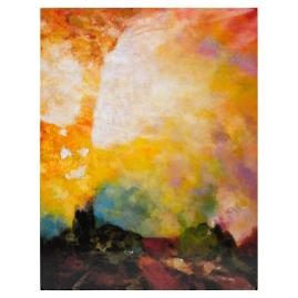 Fire in the Sky Outdoor Canvas
