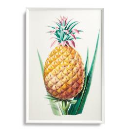 Pineapple Print from the New York Botanical Garden