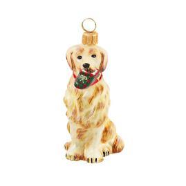 Diva Dog Golden Retriever with Tartan Plaid Slipper