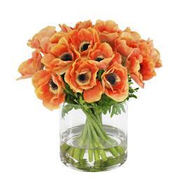 Anemone in Short Vase
