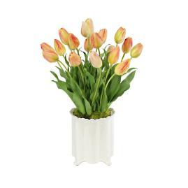 Tulip in Creamware