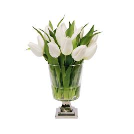 Tulip in Footed Vase