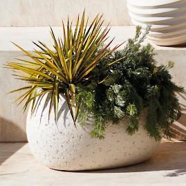 Rocco Planter by Porta Forma