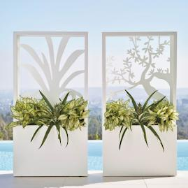 Olive Tree Partition Planter by Porta Forma