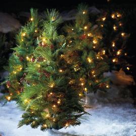 Winter Pine Cordless Stake Trees, Set of Two