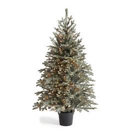 Diamond Dust Potted Christmas Tree