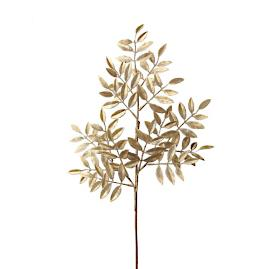 Ruscus Gold Sprays, Set of 12
