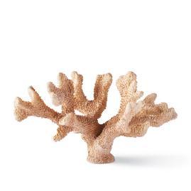 Peche Finger Coral