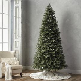 Grand Blue Spruce 10' Slim Profile Tree