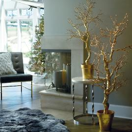 Gold Potted Manzanita Tree