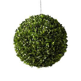 Boxwood Sphere