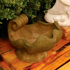 Concetto Shell Planter