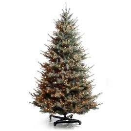 Colorado Blue Spruce Christmas Tree with FlipTree Stand