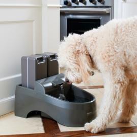 Water Purification Pet Fountain