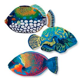 Set of Three Parrot, Blue Triggerfish, and Mandarin