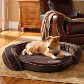 Cool Gel Memory Foam Pet Bed