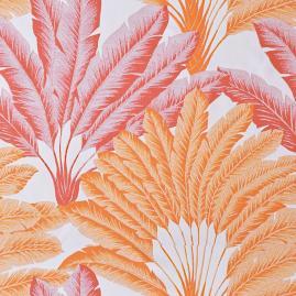 Atherton Palm Peony