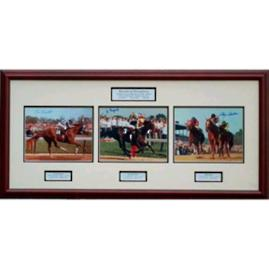 'Decade of Champions' Triple Crown Photo Collage