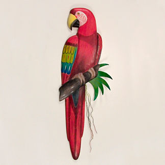 Red Macaw Wall Art