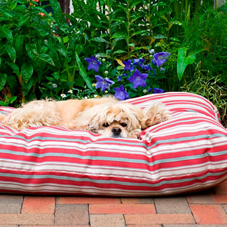 Indoor/Outdoor Striped Jamison Pet Bed